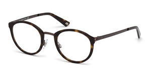 Web Eyewear WE5193 009