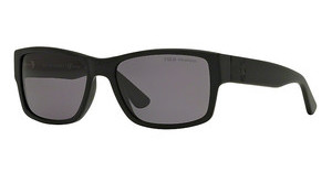 Polo PH4061 500181 POLAR GRAYMATTE BLACK