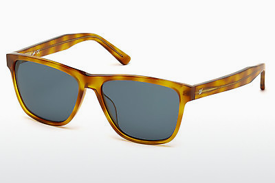 Slnečné okuliare Web Eyewear WE0161 53V - Havanna, Yellow, Blond, Brown