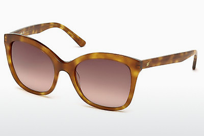 Slnečné okuliare Web Eyewear WE0165 53F - Havanna, Yellow, Blond, Brown